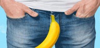 Penis Hakkında Bilinmeyen 20 İlginç ve Tuhaf Bilgi!