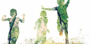 Çevre Etki Değerlendirme Yönetmeliği (ÇED) Hakkında Bilgi