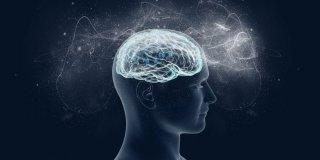 Multipl Skleroz (MS) Hastalığı Hakkında Bilgi
