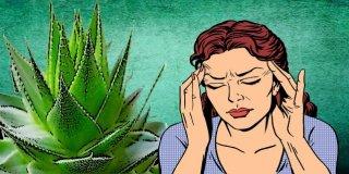 Baş Ağrısına İyi Gelen 7 Doğal Bitki