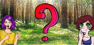 Doğada Zaman Geçirmek İçin 13 Büyük Neden
