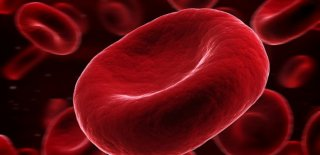 Kan Pıhtılaşması Belirtileri ve Tedavisi