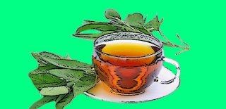Ada Çayının Faydaları Nelerdir? - Ada Çayı Nelere İyi Gelir?