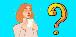 Alerjik Rinit Nedir, Belirtileri, Nedenleri ve Tedavisi Hakkında Bilgi