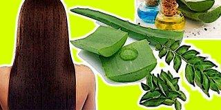 Saç Bakımı İçin Bitkisel Çözümler Nelerdir?