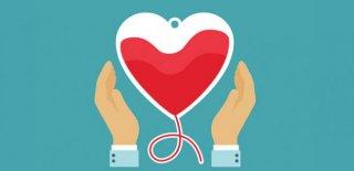 Donör Nedir, Nasıl Donör Olunur, Donör Olmanın Şartları Nelerdir?