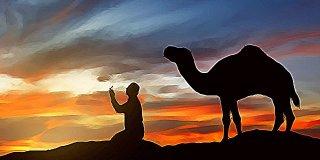 Hz. Salih'in (A.S) Hayatının Kısaca Özeti