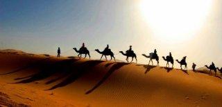 Sahra Çölü Hakkında Bilinmeyen 10 Bilgi
