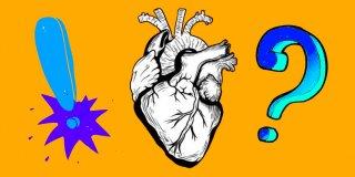 Kalbin Yapısı Nasıldır ve Görevi Nedir?