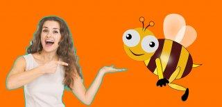Arı Poleninin Faydaları Hakkında Bilinmesi Gerekenler