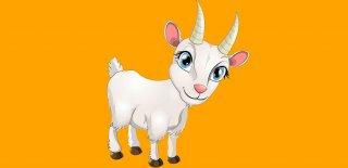 Keçi Sütünün Mucizevi Faydaları