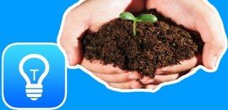 Sebze Nasıl Yetiştirilir? Sebze Yetiştirmenin 7 Püf Noktası!