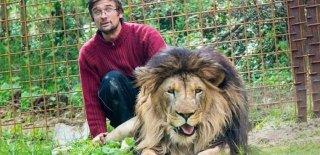 Çekya'da Evinin Bahçesinde Beslediği Aslan Tarafından Öldürüldü