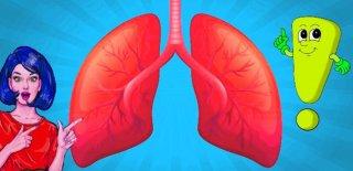 72 Saate Akciğerinizi Temizleyebilmeniz İçin Yapmanız Gereken 8 Şey