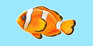 Rüyada Balık Görmek Ne Anlama Gelir?