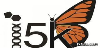 5000 Böcekli Genom Projesi