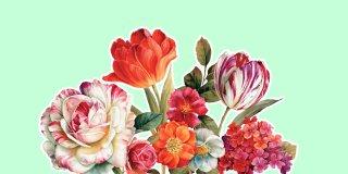 Rüyada Çiçek Görmek Ne Anlama Gelir?