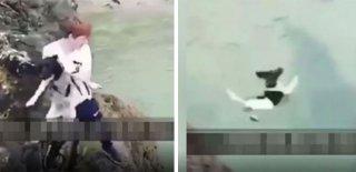 Köpeği Metrelerce Yükseklikten Denize Attı!