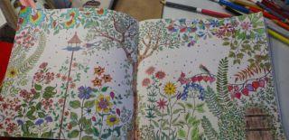 Yeni Hobi Furyası: Esrarengiz Bahçe