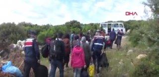 Çanakkale'de 53 Kaçak Jandarma Tarafından Yakalandı