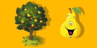 Rüyada Armut Ağacı Görmek Ne Anlama Gelir?