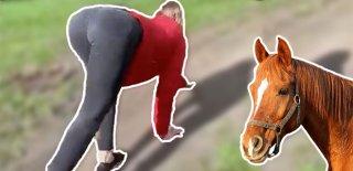 At Gibi Kadın! İlgisi ve Sevgisi Yüzünden...