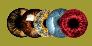 Eşi Benzeri Bulunmayan 6 Göz Rengi
