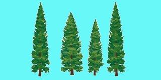 Rüyada Çam Ağacı Görmek Ne Anlama Gelir?