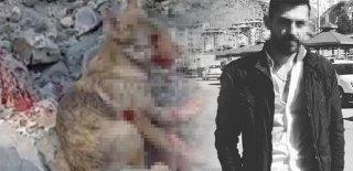 Kurt Yavrusuna Yaptığı İşkenceyi Sosyal Medyadan Paylaştı, Para Cezasına Çarptırıldı!