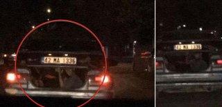 Hayatlarını Hiçe Saydılar! İki Çocuğun Otomobilin Bagajındaki Tehlikeli Yolculuğu Kameralara Böyle Yansıdı!