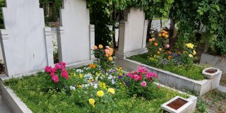 Rüyada Annenin Öldüğünü Görmek Ne Anlama Gelir?