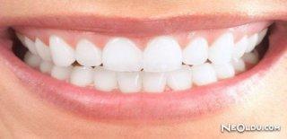 Diş ve Diş Eti Hastalıkları