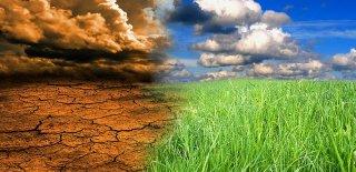 Türkiye'de Görülen İklim Tipleri ve Özellikleri Nelerdir
