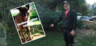 Bunun Adı Vahşet! Havlamasına Dayanamadı Köpeği Kurşunlayıp Öldürdü!