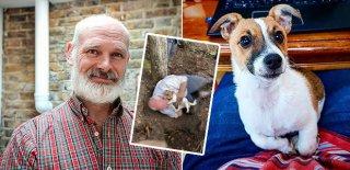 49 Yaşındaki Adam Kaybolan Köpeğine Kavuştu, Göz Yaşlarına Boğuldu!