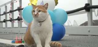 Sosyal Medyanın Ünlü Rus Fenomenine Sürpriz Doğum Günü Partisi!