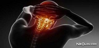 Boyun Düzleşmesi Belirtileri ve Tedavisi