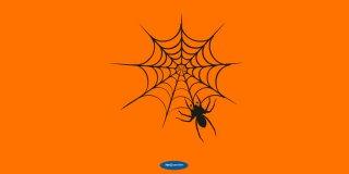 Rüyada Örümcek Ağı Görmek Ne Anlama Gelir?
