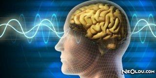 Beyninizi Zinde Tutmanın Yolları