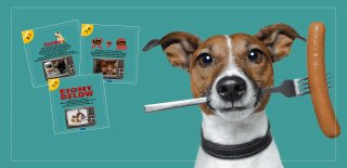 Köpek Filmleri – Afacan ve İnsan Dostu Köpeklerin IMDb Puanı Yüksek En iyi 15 Filmi