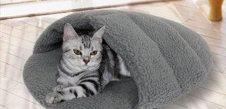 En İyi Kedi Yatağı Modelleri, Fiyatları ve Özellikleri