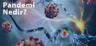 Pandemi Nedir? COVID-19 Neden Pandemi İlan Edildi?