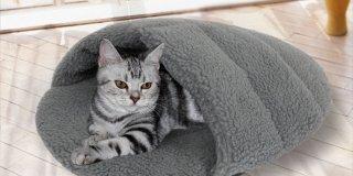 Kedinizi Güvende Hissettirecek En İyi Kedi Yatağı Modelleri