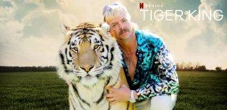 Tiger King Belgeseli Hakkında Bilgi, Oyuncu Kadrosu ve İzleyici Yorumları