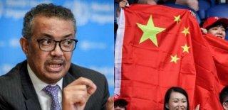 Çin, Dünya Sağlık Örgütünü Tehdit mi Etti? Çıkan Rapor Doğrulandı…