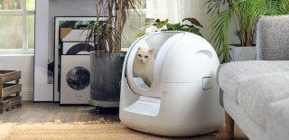 Kedi Kum Kabı Nasıl Olmalı? En İyi 5 Kapalı Kedi Tuvaleti