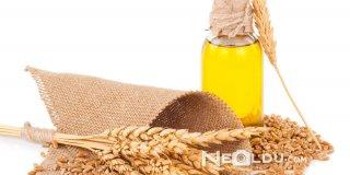 Buğday Özü Yağının Saça Faydaları ve Kullanımı