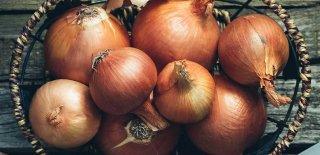 Soğan Hangi Hastalıklara İyi Gelir? Soğanın Mucizevi 10 Faydası