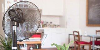 Yazın Serinliği Evinize Geldi: En İyi Vantilatör Tavsiyeleri | 2021
