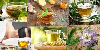 Sakinleştirici ve Rahatlatıcı Etkisi Bulunan 10 Bitki Çayı